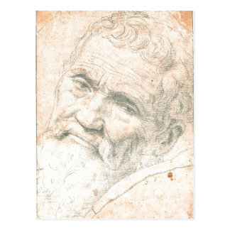 Summary This is a special Portrait of Michelangelo Postcard