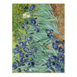 Summary Van Gogh's Irises center expired implement Post Cards