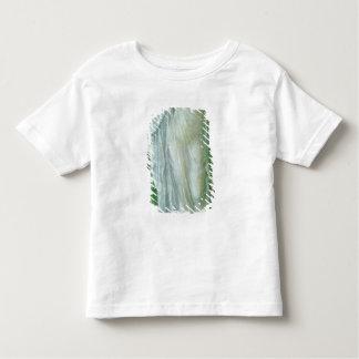 Summer, 1869-70 toddler t-shirt