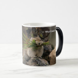 Summer - American Pica Magic Mug
