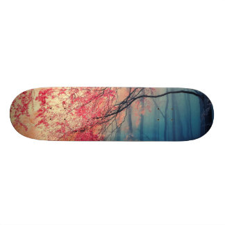 Summer and winter in the forest skateboard