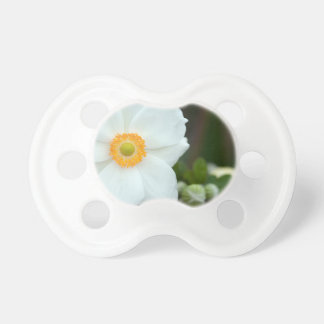 summer-anemone pacifier