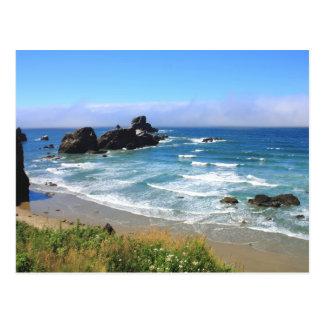 Summer at Seal Rock Oregon Postcard