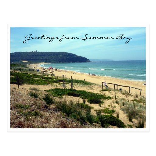 summer bay greetings post card