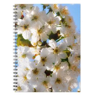 summer beach flower cherry blossom - white blue spiral notebook