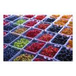 Summer Berries Print Photo Print