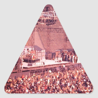 Summer Blowout 1980 Triangle Sticker