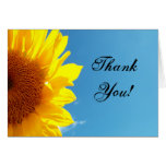 Summer Blue Sky with Yellow Sunflower Greeting Cards