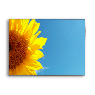 Summer Blue Sky with Yellow Sunflower Envelope