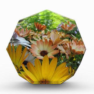 Summer Bouquet Acrylic Award