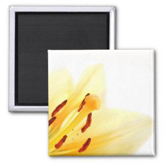 """""""Summer Breeze"""" Floral Magnet"""