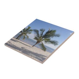 Summer Breeze Florida Keys Ceramic Tile