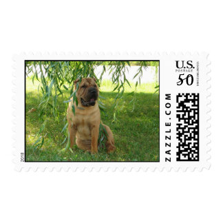 Summer Breeze Postage