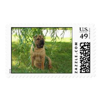 Summer Breeze Postage Stamp