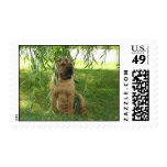 Summer Breeze Postage Stamp