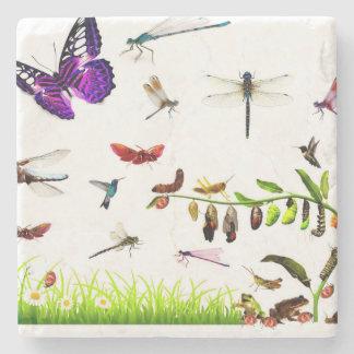 summer bugs coaster
