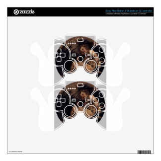 Summer by Tintoretto Decal For PS3 Controller