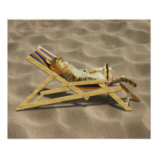 Summer Cat Nap in Beach Chair with Shadow Poster