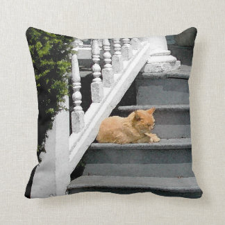 Summer Cat Nap Throw Pillow