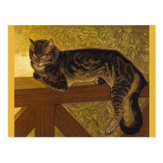 Summer Cat on Balustrade Vintage Art Postcard