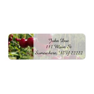 Summer Cherries Label