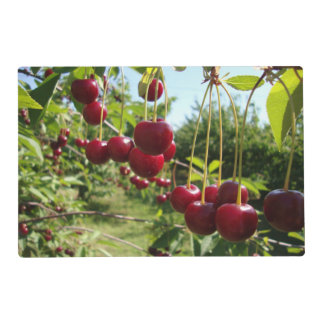 Summer Cherries Laminated Placemat
