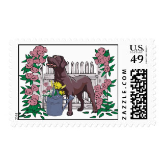 summer chocolate lab stamp