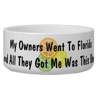 Summer Citrus Florida Bowl