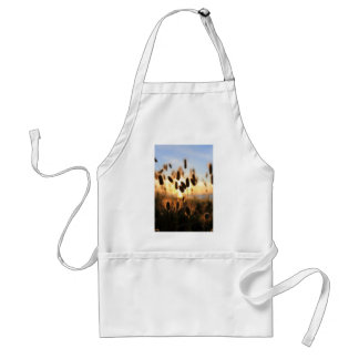 Summer coastal plants cotton tails adult apron