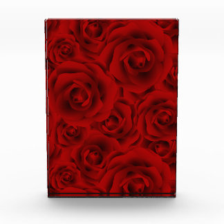 Summer colorful pattern rose award