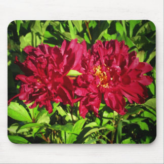 Summer contrast Maroon on Green Flowers Mouse Pad