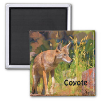 Summer Coyote Wildlife Painting 2 Inch Square Magnet