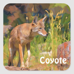 Summer Coyote Wildlife Painting Square Sticker