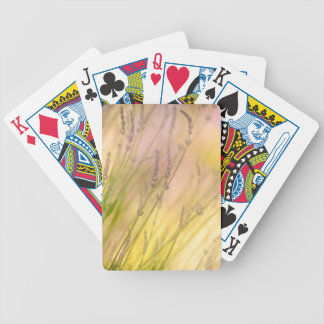 Summer Daydream Bicycle Playing Cards