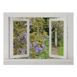 Summer Days - Open Window View with Blue Wisteria Poster