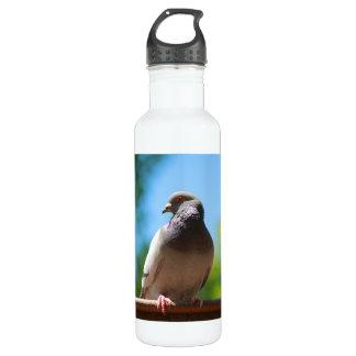 summer dove water bottle