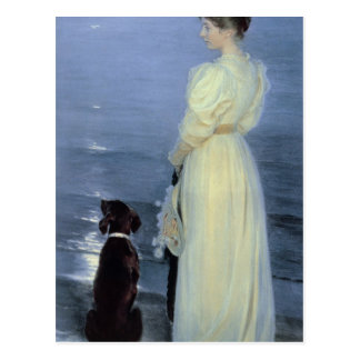 Summer Evening at Skagen Postcard