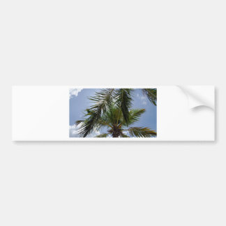 summer feelings bumper sticker