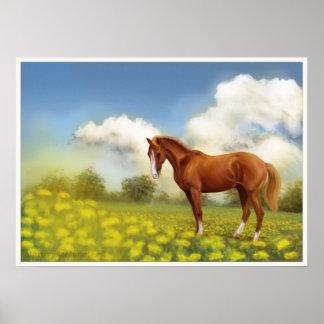 Summer field horse poster