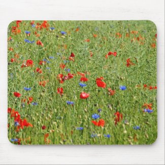 Summer field with red and blue flowers mouse pad