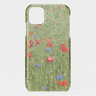 Summer field with red and blue flowers iPhone 11 case