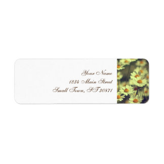 Summer field with white daisy label