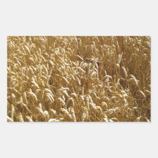 summer fields rectangular sticker