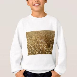 summer fields sweatshirt
