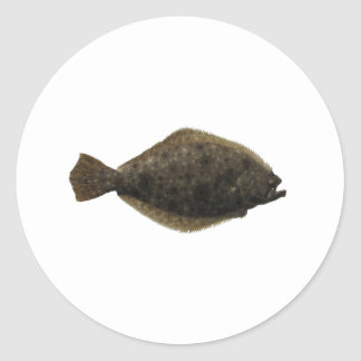 Summer Flounder Classic Round Sticker