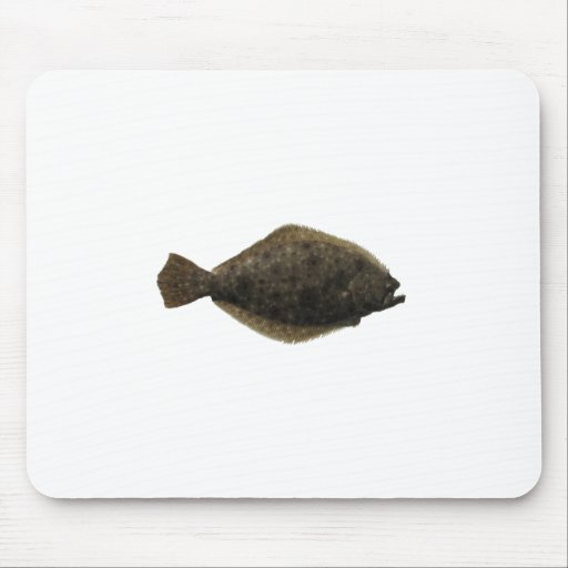 Summer Flounder Mouse Pad