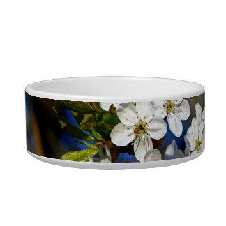 Summer Flower Bowl
