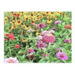 Summer Flower Garden Postcard