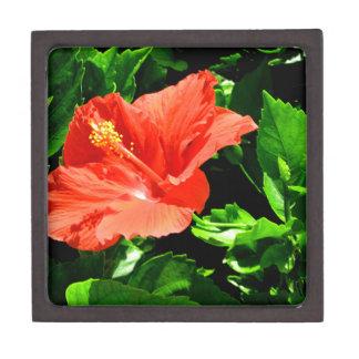 Summer Flower Gift Box