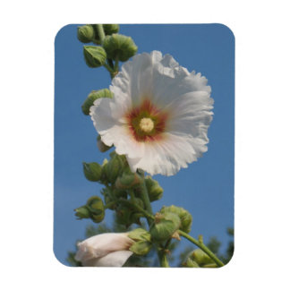 Summer Flower - Hollyhock Magnet
